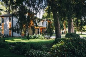 Home amidst greenery